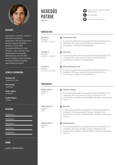 AccountantHungarian.pdf