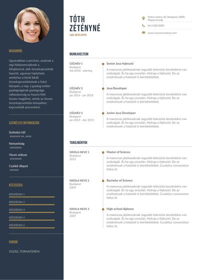 JavaDeveloperhungary.pdf