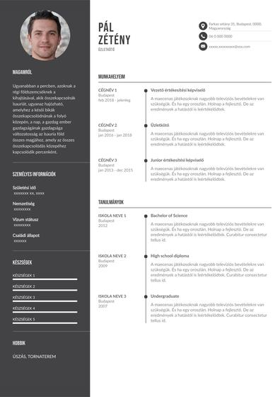 SalesResumehungary.pdf