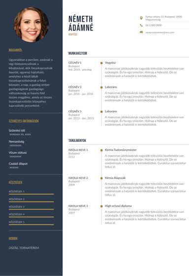 Chemistry Resume (Hungary).pdf