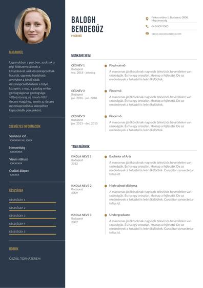Waitress Resumes (Hungary).pdf